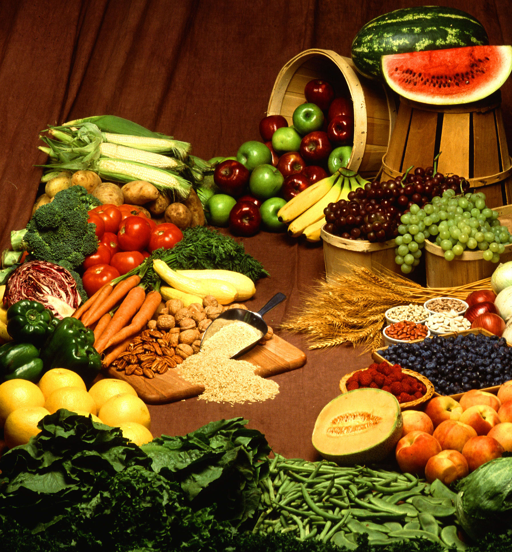 My Food Revolution